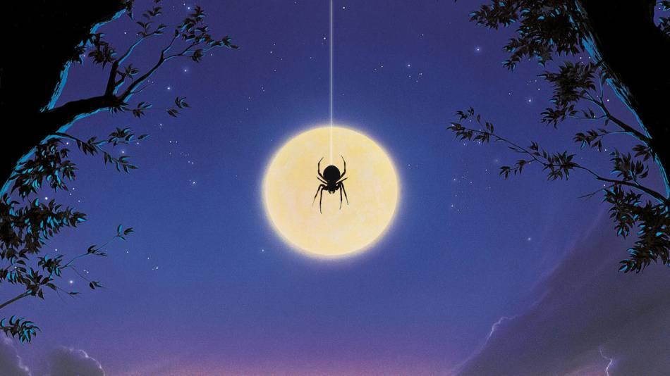 Примета паук на кухне