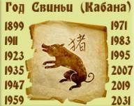 Сочетание знака зодиака и года рождения