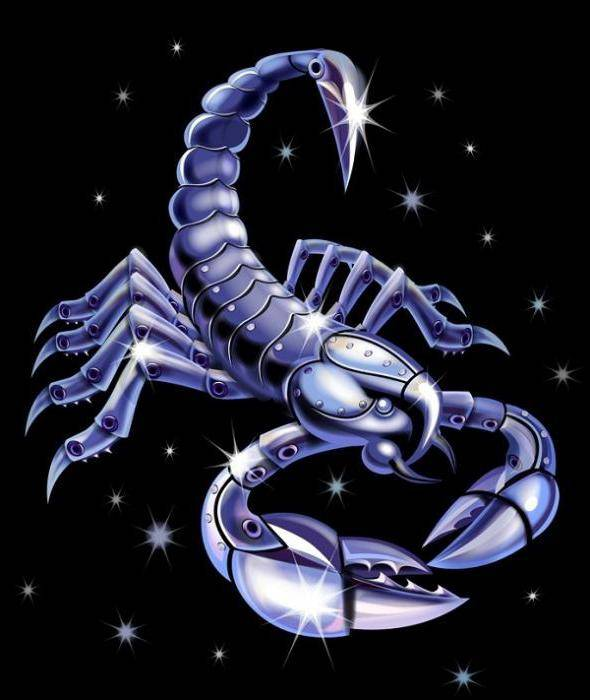 Знак зодиака скорпион камень талисман