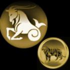 Сексуальный гороскоп для Козерога - Тигра