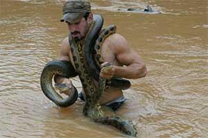 Год змеи мужчина