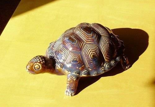 Что означает черепаха