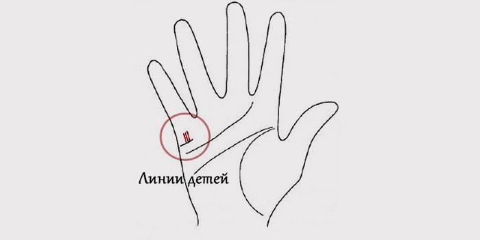 Погадать на руке