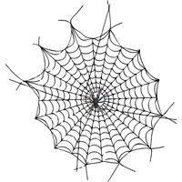 Приметы про паутину