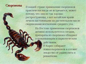 Характеристика скорпиона мужчины в любви