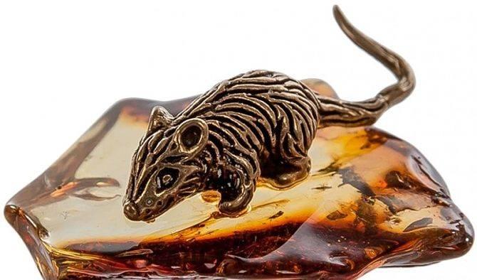 Мышка в кошелек для денег