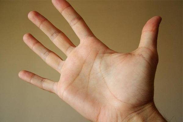 Как определить линию жизни по руке