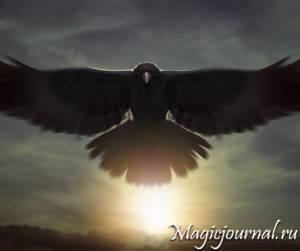 Символ ворона