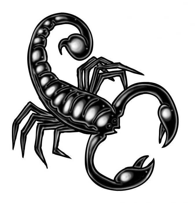 Гороскоп тигр скорпион женщина