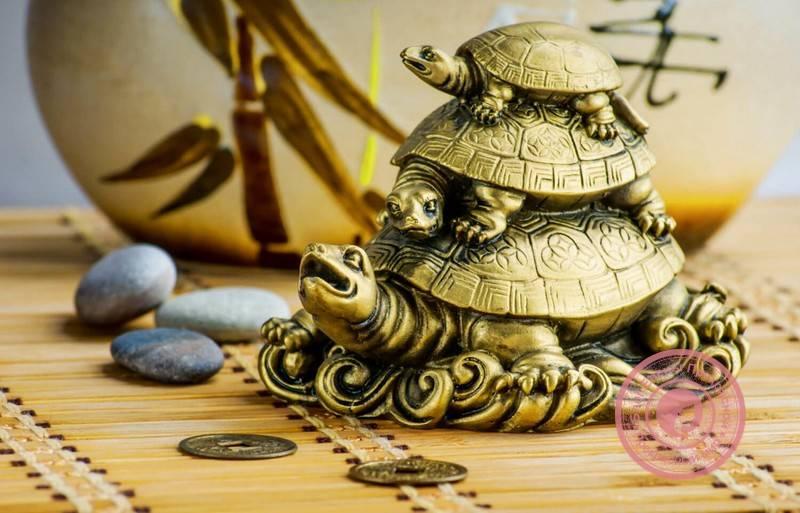 Что означает талисман черепаха
