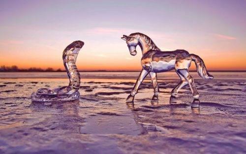 Мужчина лошадь женщина змея совместимость