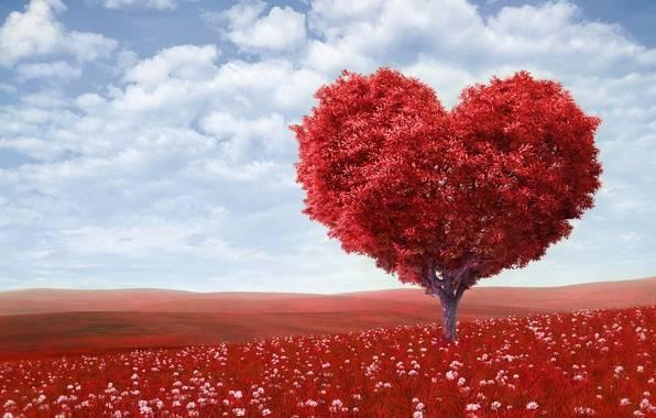 Симоронские ритуалы на любовь мужчины
