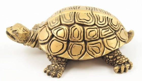 Талисман черепаха значение