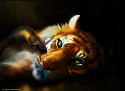 Совместимость мужчина крыса женщина тигр