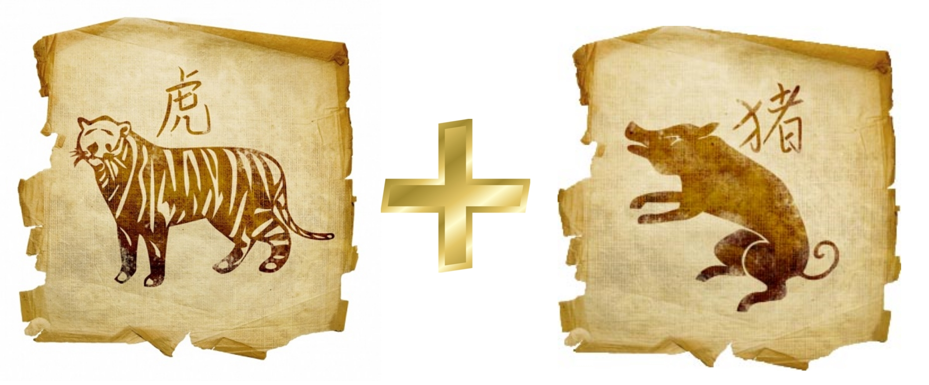Совместимость тигр и тигр по гороскопу